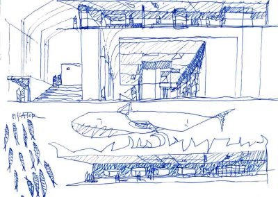 Concorso-Santuario-dei-Cetacei-04-StudioGamp.it-Architettura